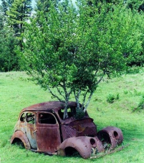 Работы, которые выполняются по ремонту и восстановлению кузова автомобилей borba-s-korroziey-avto